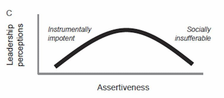 Leadership Perceptions