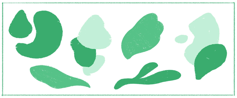 Human & organic shapes