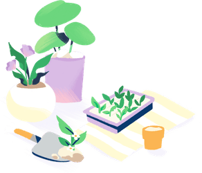 Illustration: house plants and plant starters next to gardening tools